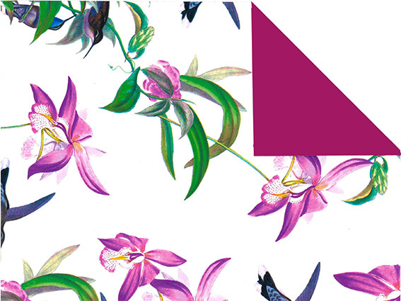 Geschenkpapier Kolibri